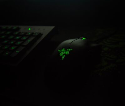 Review of Razer Deathadder Elite and Logitech G203 Prodigy (the best gaming mouse)